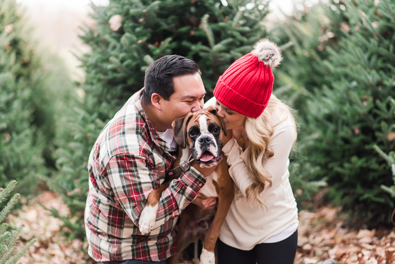 Throwback to Christmas at Pine Valley Farms | Kaitlin, Ben ...